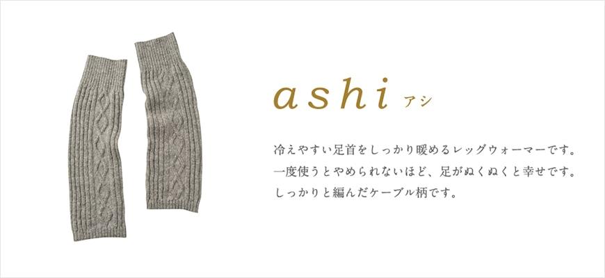kc_ashi